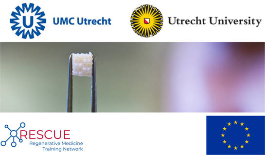 PhD student positions (f/m) - Regenerative Medicine & Stem Cells