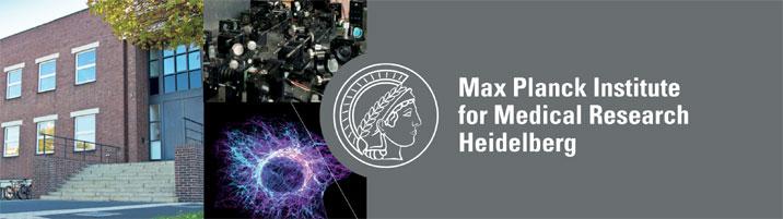 Wissenschaftlicher Referent bzw. Koordinator (m/w/d) - Max-Planck-Institut für medizinische Forschung- Logo