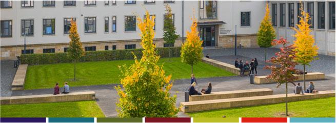 Professur (W2) - Evangelische Hochschule Dresden - Bild
