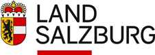 Direktorin/Direktor (m/w/d)  - Land Salzburg - Logo