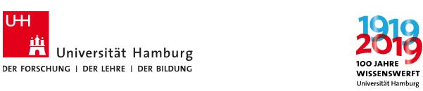VERTRETUNGSPROFESSUR - Uni Hamburg - Logo