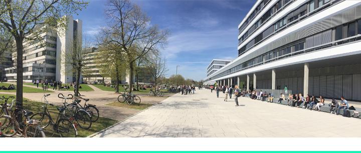 Professorship of Microbiology and Hospital Hygiene - Universität Bielefeld - Header