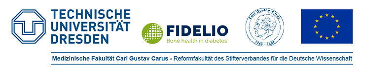PhDs within major EU-funded project - TU Dresden - Logo