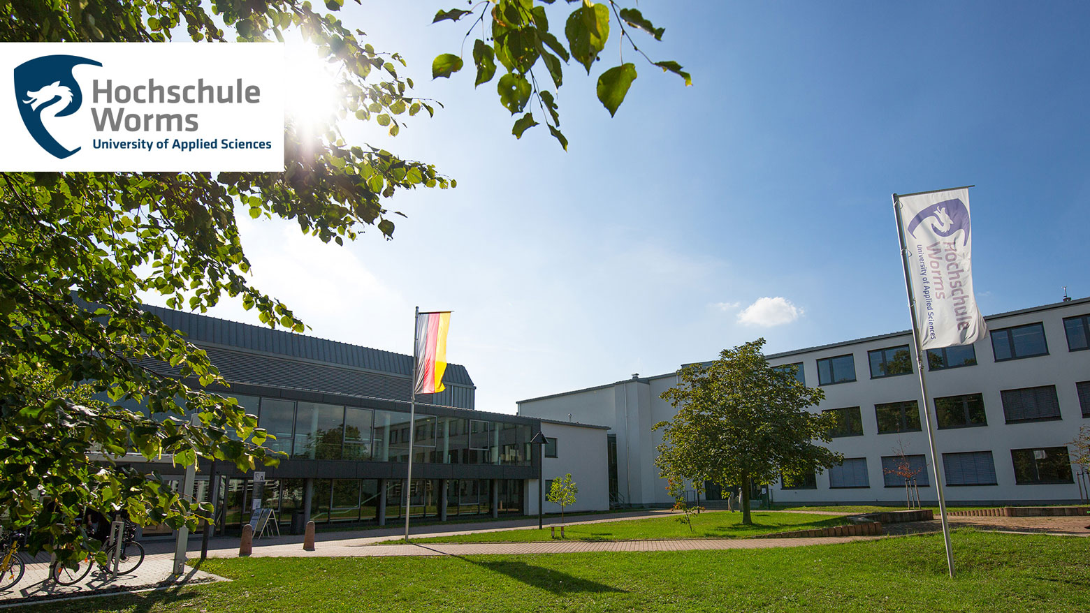 Projektmitarbeiter - Hochschule Worms - Logo