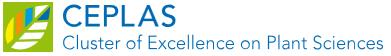 wissenschaftlicher Experte (m,w,d) - CEPLAS - Logo