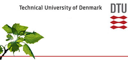 Professorship - DTU - Logo
