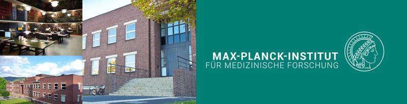 Electronics / Photonics Engineer (m/f/d) - Max-Planck-Institut für medizinische Forschung- Logo