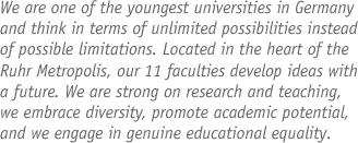 Junior Professorship (W1/W2) - Uni Duisburg-Essen - logo