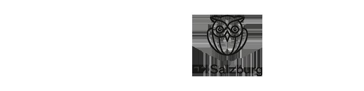 Professur Bauphysik - FH Salzburg - Logo