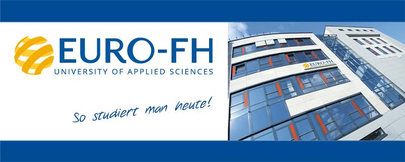 Professur - Europäische Fernhochschule Hamburg - Logo