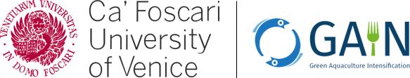 Research fellowship - Università Ca' Foscari Venezia - Logo