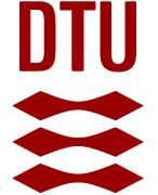 Postdoc  - DTU - Logo