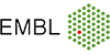 ARISE Fellowship for technology developers - EMBL Heidelberg - Logo