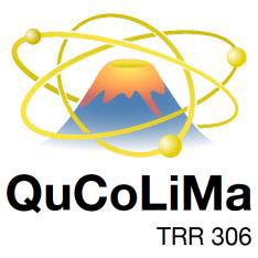 Logo  - QuCoLiMa