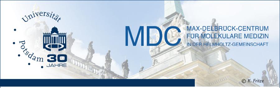 Full Professorship (W3) - Uni Potsdam - Logo