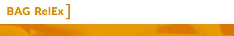 logo  - BAG RelEx