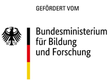 Direktor (m/w/d) - BMBF - Log
