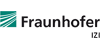 Head (f/m/d) of Project Group for GMP Process Development and GMP Production of Vectors - Fraunhofer-Institut für Zelltherapie und Immunologie - Logo