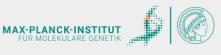 Koordinator (m/w/d) für die International Max Planck Research School for Biology and Computation - Max-Planck-Institut für molekulare Genetik(MPIMG) - Logo