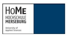 Professur (W2) Kulturgeschichte - Hochschule Merseburg - Logo