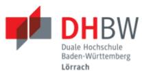 Professur (W2) für Betriebswirtschaftslehre, insb. Gesundheitsmanagement - Duale Hochschule Baden-Württemberg (DHBW) Lörrach - Logo