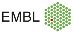 ARISE Fellowships for technology developers - EMBL - Logo