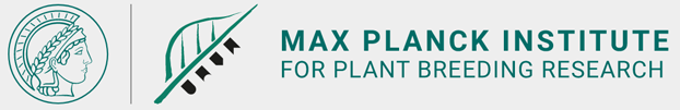 Bioinformatician (m/f/d) Department of Plant Microbe Interactions - Max Planck Institute for Plant Breeding Research (MPIPZ) - Logo